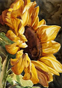Sunflower Pictures, Sunflower Art, Watercolor Sunflower, Watercolor Flowers, Watercolor Art, Blooming Sunflower, Oil Painting Flowers, Oil Painting On Canvas, Paintings Of Sunflowers