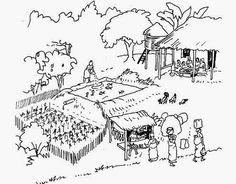 The Olde Barn: Backyard Farming