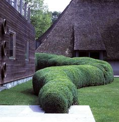 An unusual take on the Belgian garden hedge: It's Organic!!! Designed by floral designer extraordinaire, Daniel Ost. Is there anything he does that isn't exceptional?