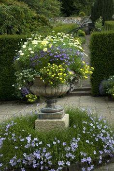 Beautiful urn planting