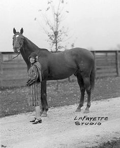 MAN O' WAR - is considered one of the greatest Thoroughbred Race Horses of all time. All The Pretty Horses, Beautiful Horses, Animals Beautiful, Thoroughbred Horse, Clydesdale Horses, Breyer Horses, Sport Of Kings, Racehorse, Vintage Horse