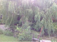 Haven med de 4 haver