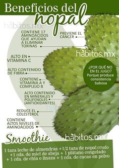 Smoothie de Nopal! Sus beneficios.