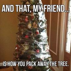 Funny christmas tree hilarious xmas 67 ideas for 2019 Funny Christmas Tree, After Christmas, Xmas Tree, Christmas Humor, Christmas And New Year, All Things Christmas, Christmas Ideas, Holiday Ideas, Merry Christmas