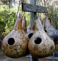Recycle Reuse Renew Mother Earth Projects: How to make a Gourd Birdhouse