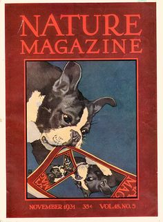 The November 1931 cover of Nature Magazine goes meta in an adorable Boston…