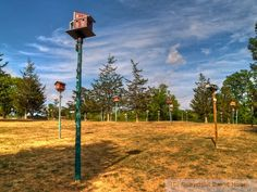 Birdhouse City, Picton, Ontario    How to build nice