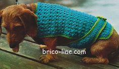 crochet manteau chien patron gratuit | Brico-line, toute la créativité - tricot, crochet, couture ... Pet Care, Couture, Blanket, Pets, Halloween, Knitted Coat, Dog Cat, Crochet Patterns, Wool
