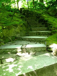 stone stairs into the green
