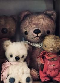 Teddy Bears For Sale, Chubby Babies, Very Cold, Cute Stuffed Animals, I Am Sad, Little Fox, Kind Words, Hat Making, Guys And Girls