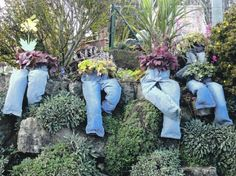 Another gardening idea with old jeans. Gloucestershire Resource Centre http://www.grcltd.org/home-resource-centre/