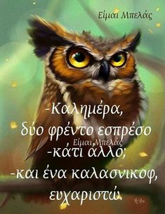Just For Fun, Good Morning, Wise Words, Life Is Good, Funny Quotes, Owl, Humor, Animals, Facebook