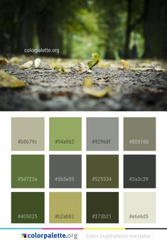 Nature Leaf Yellow Color Palette #colors #inspiration #graphics #design #inspiration #beautiful #colorpalette #palettes #idea #color #colorful #colorscheme #colorinspiration #colorcombinations #colorcombos #colorpalette_org Flat Color Palette, Color Palettes, Color Combinations, Color Schemes, Dark Khaki, Colour Board, Color Inspiration, Family Room, Leaves