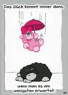 Olaf das Grummelschaf und Poppy Postkarte mit lustigen Sprüchen - Das Glück kommt immer dann, wenn man es am wenigsten Postkarten Lustige Sprüche