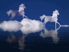 Awesome! Horse art (photo)