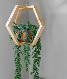 Wooden Plant Hanger – Plant Holder – Plant Hanging – Ceiling Plant hanging-Wall Planter Hexagonal Plant Hanging This hanging is perfect for anyone who loves [. Hanging Wall Planters, Hanging Plants, Indoor Plants, Hang Plants From Ceiling, Patio Plants, Indoor Gardening, House Plants Decor, Plant Decor, Wood Wall Shelf