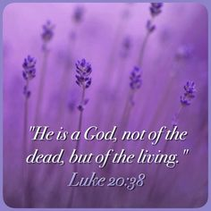 Luke 20:38 Reminds us of just how sure the resurrection is....in Jehovah's memory the faithful are still living. Death will only last such short time when compared to their life forever in paradise filled with blessings from their God.
