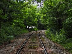 Discover the photography 124445093 by Sabine Seiter_ey – Explore millions of royalty-free pictures from outstanding photographers with EyeEm Vanishing Point, Royalty Free Pictures, Green Colors, Railroad Tracks, Perspective, Transportation, Outdoors, Explore, Day