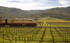 Napa wine train...10 Breathtaking U.S. Train Trips Recalling the Golden Era of Rail Travel | Travel + Leisure
