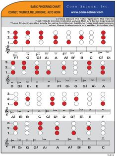 Fingering Charts for Trumpets and Cornets provided by Conn-Selmer. We have quality instruments for sale and for rent at Trumpet Fingering Chart, Saxophone Fingering Chart, Sound Of Music, Music Love, Trumpet Instrument, Play Trumpet, Trumpet Sheet Music, Mellophone, Instruments
