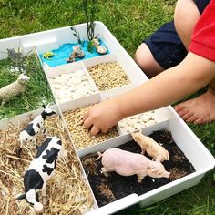 "Anna on Instagram: ""SENSORY FARMYARD TRAY I'm loving this partitioned tray for small world play and creative art prompts at the moment! It's another Ikea…"""