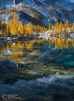 ~~Enchantment Lakes ~ larch trees and water reflections, high alpine basin, Washington by Zack Schnepf~~