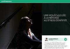 Réponse au stress: une molécule identifiée - La Presse+ Biologist, Neuroscience, Immune System