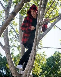 I'm a monkey. I ain't gotta look for my Prince, he's in a tree