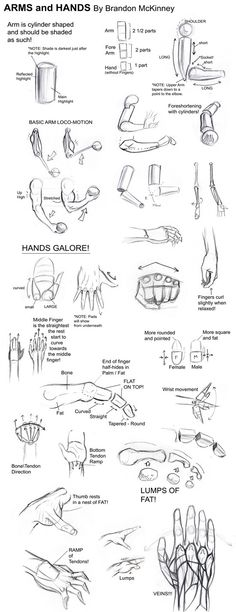 Arms and Hands Tutorial by ~Snigom