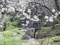 Primavera nell'area archeologica