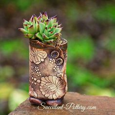 Succulents In Containers, Succulent Pots, Cacti And Succulents, Ceramic Pinch Pots, Ceramic Planters, Pottery Pots, Ceramic Pottery, Ikebana, Pottery Handbuilding