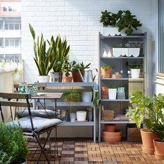 HINDÖ kast   #IKEA #WelkomBuiten #balkon #tuin #tuinkas #planten #groen #kas #buiten