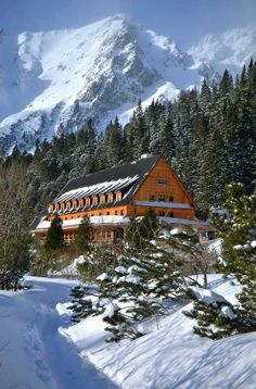 Heart Of Europe, I Love Winter, Natural Wonders, Mount Rainier, Hungary, Mount Everest, Explore, Mountains, Country