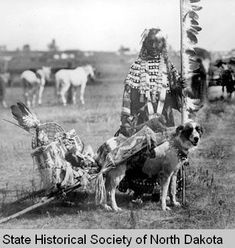 Dakota Native American & dog. The dog was the only work animal indigenous Americans had until the horse was introduced. In many native languages the word for horse derives from dog.