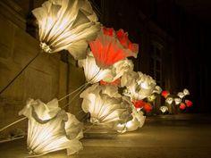 Giant flowers - Paper sculptures - Junior Fritz Jacquet