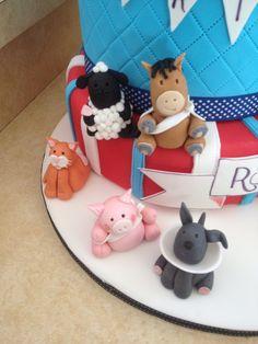 Animal details, vet cake