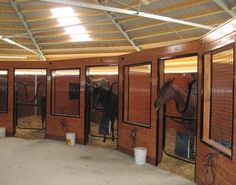 Round stable with horse boxes and a central storage and work room. Would allow large paddocks out of the stalls and still have central hub for barn activities.