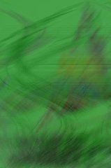 Suzanne L Kish - Pacific Winds