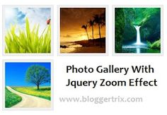 Attractive Photo Gallery With Jquery Zoom Effect | Blogger Trix | Blogger Tips and Tricks | Free Templates