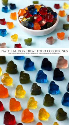 Homemade Dog Treats | Rainbow Gummies | Using Natural Colourings for Homemade Dog Treats