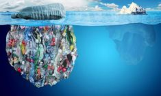 Mankind's use of plastic is having dire ramifications for our planet. How can we reduce plastic waste and pollution? Ocean Pollution, Plastic Pollution, Ocean Ecosystem, Fauna Marina, Save Our Oceans, Oceans 8, Natural News, Plastic Waste, Plastic Plastic