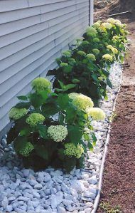 45 Easy-care and low-maintenance landscaping ideas for .- 45 Pflegeleichte und wartungsarme Landschaftsbauideen für den Vorgarten 45 easy-care and low-maintenance landscaping ideas for the front yard, ideas # Easy-care yard maintenance - Landscaping With Rocks, Outdoor Landscaping, Front Yard Landscaping, Outdoor Gardens, Landscaping Plants, Landscaping Around House, Backyard Patio, Hydrangea Landscaping, Landscaping Edging