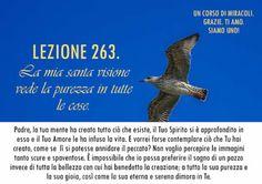 Un corso di Miracoli.: Lezione 263 del libro di esercizio. La mia santa visione vede la purezza in tutte le cose.