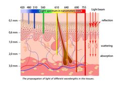 Our skin has the ability to absorb LED light and use it as a source of energy to stimulate cellular regeneration. LED light therapy, first researched by NASA fo