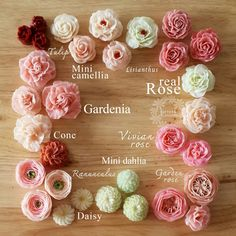 Not your grocery store style buttercream roses . Flower names. Korean Buttercream Flower, Buttercream Flower Cake, Flower Cupcakes, Buttercream Flowers Tutorial, Buttercream Icing, Frosting Flowers, Fondant Flowers, Sugar Flowers, Cake Flowers