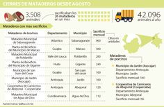 En 26 mataderos se sacrificaban más de 42.000 animales anualmente Words, Yearly, Animales, Horse
