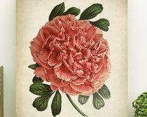 Rose pivoine botanique impression, affiche de pivoine, art de pivoine, illustration botanique vintage, décoration murale botanique, grosse fleur rose