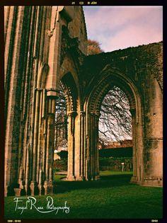 Glastonbury Abbey, Glastonbury, Somerset, England.