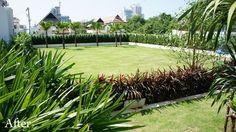 landscaping pattaya thailand