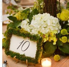 Country Green Table Numbers
